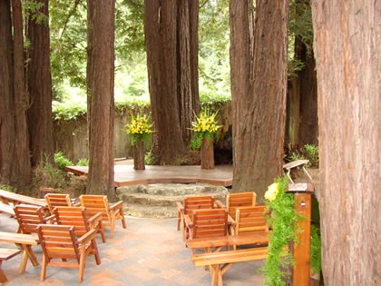 In the Redwoods Felton California Wedding Venues Candy