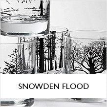 Snowden Flood