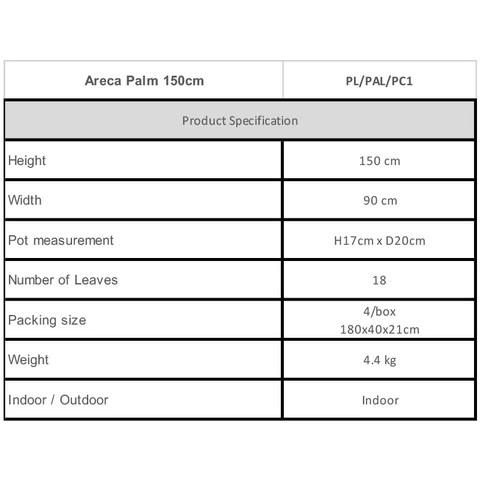 Areca Palm 150cm Specifications