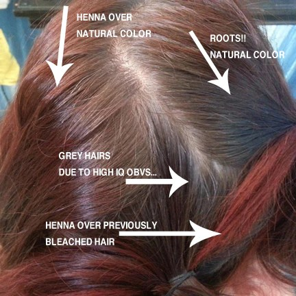 The Ultimate Henna For Hair Recipe Hair Dye Without The