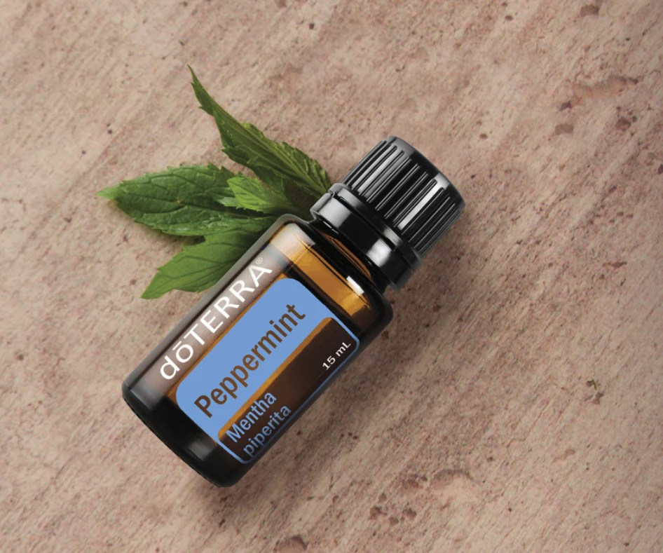 Image result for peppermint essential oil doterra