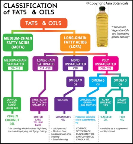 Image result for mct fatty acid
