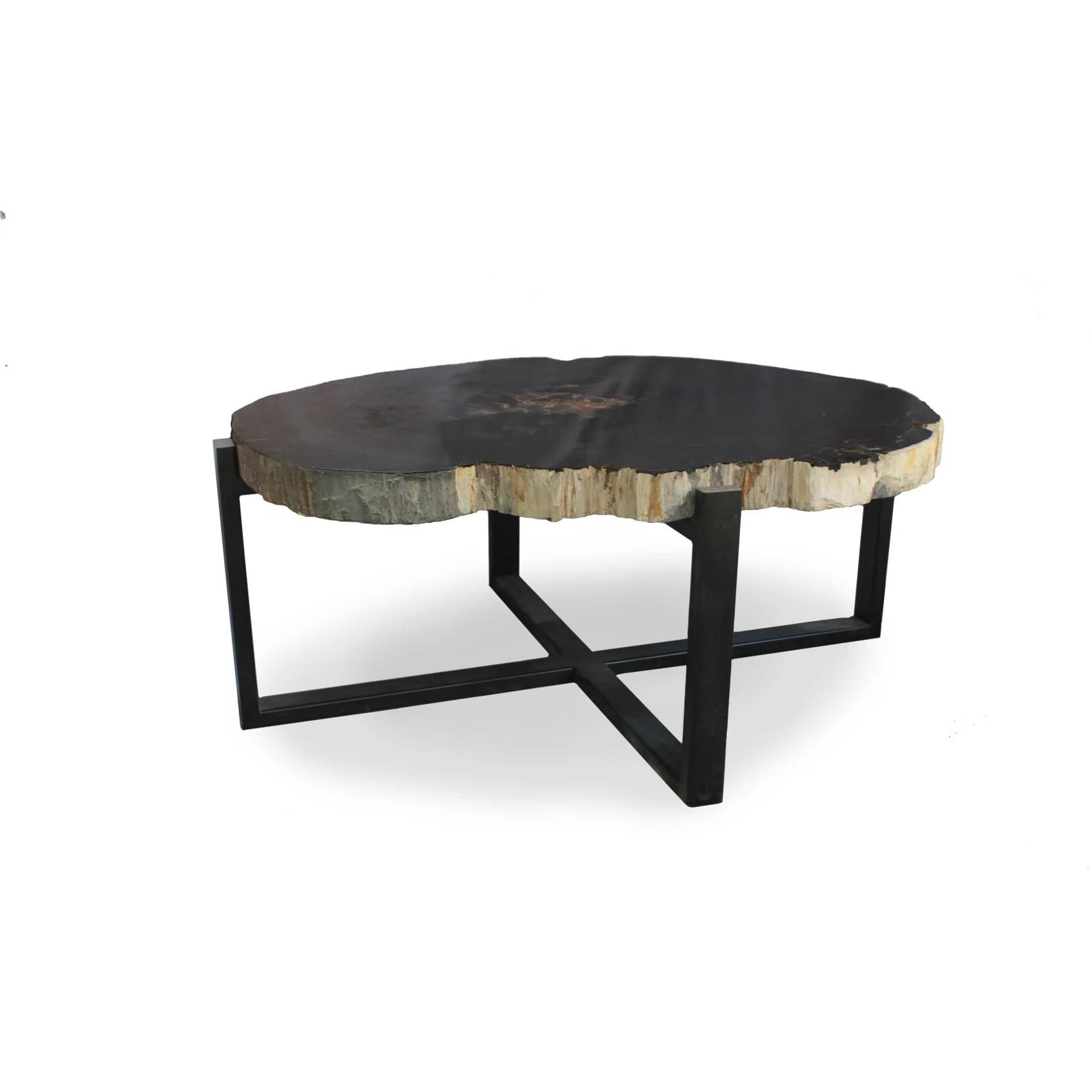 milo petrified wood coffee table dark