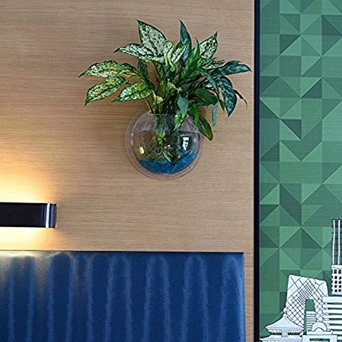 Cosanter Transparent Pots de Fleur en Acrylique Créatif Pots à Suspendre Multifonctions Aquarium pour Plantes Fleurs Poisson