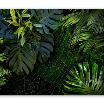 murando Papier peint intissé feuilles tropicales Monstera 350x256 cm Décoration Murale XXL Poster Tableaux Muraux Tapisserie Photo Trompe l'oeil Ornament Nature vert b-C-0224-a-a