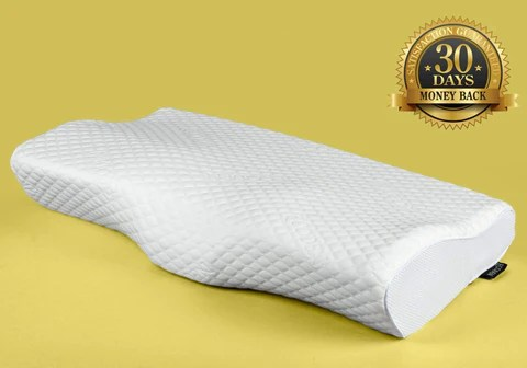 ecoden bamboo charcoal pillow