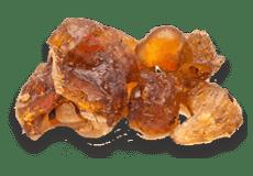 Indian Bdellium