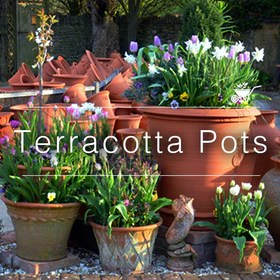 Buy Flower Pots Planters Online In India Mybageecha