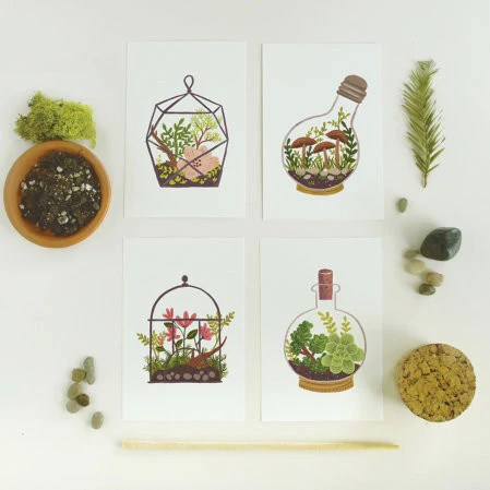 Hand Illustrated Succulent Postcards by Quill & Fox