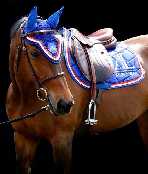 tapis de selle bleu marine et bleu roi un look pour votre cheval alexandra ledermann sportswear