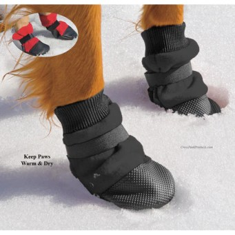 Image result for dog boots hiking