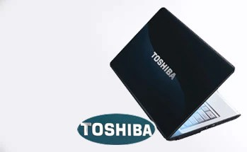 case show   toshiba laptop logo sticker - Case Show