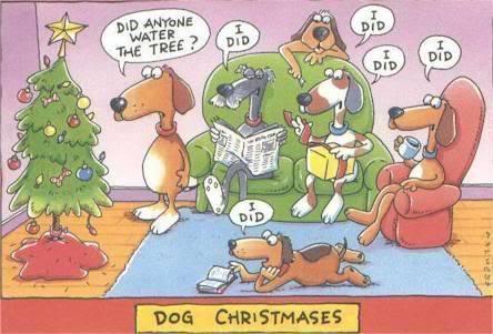 Image result for funny christmas meme