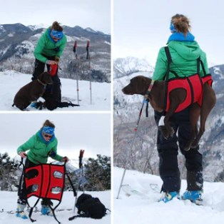 Fido Pro Airlift Harness