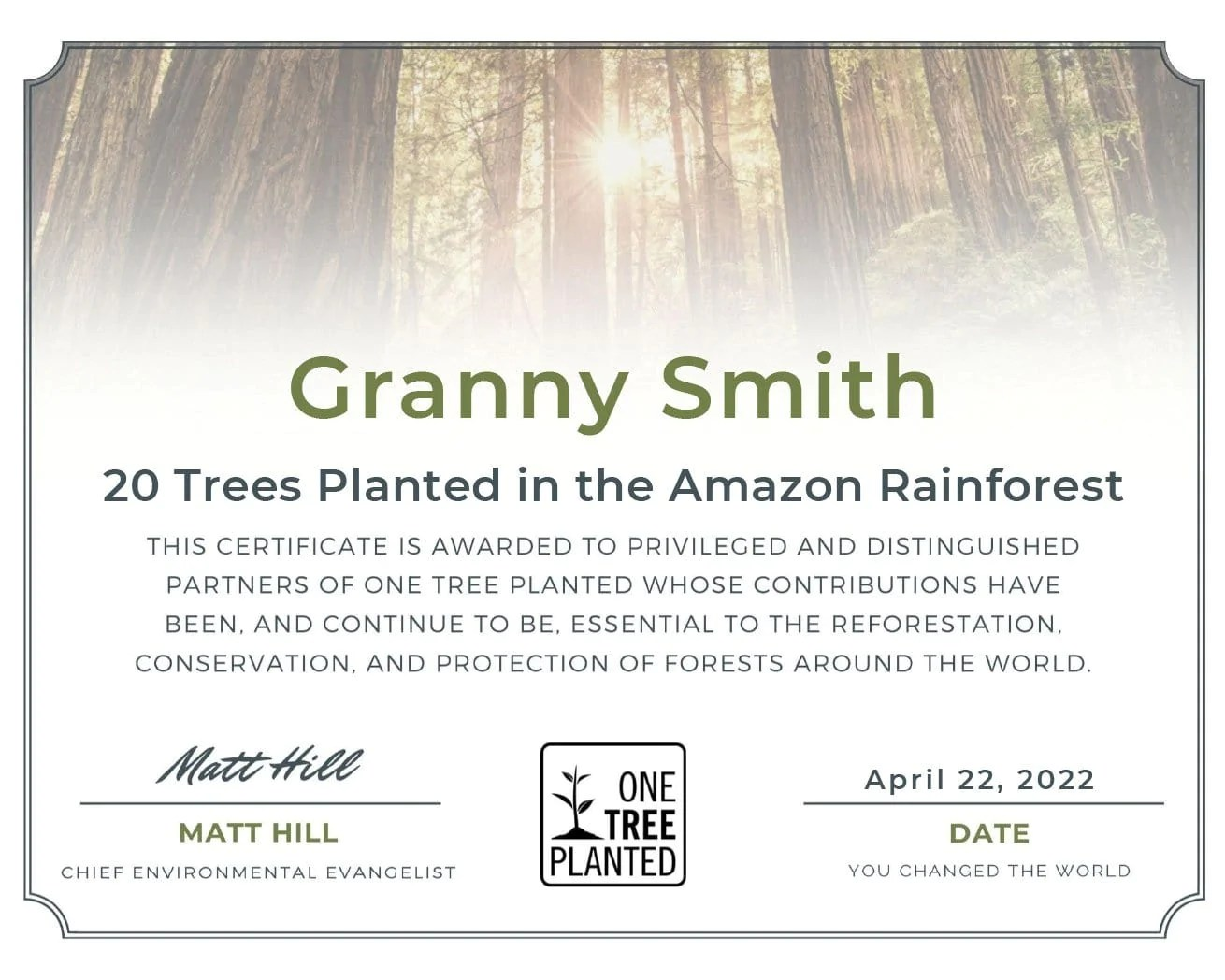 These trees are generally hardwood trees like brazil nut and kapok. Plant Trees In The Amazon Rainforest One Tree Planted
