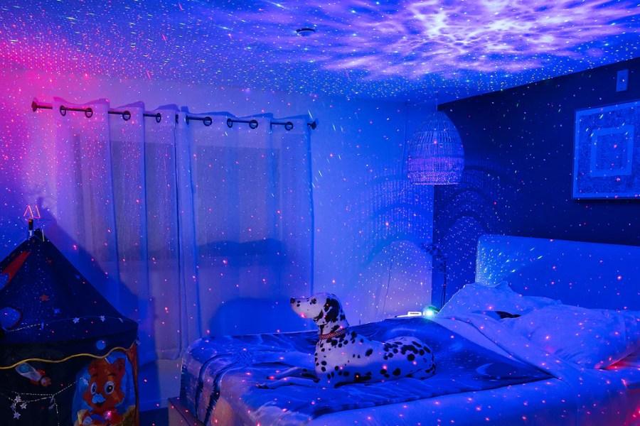 chien dans la chambre regardant les lumières des étoiles