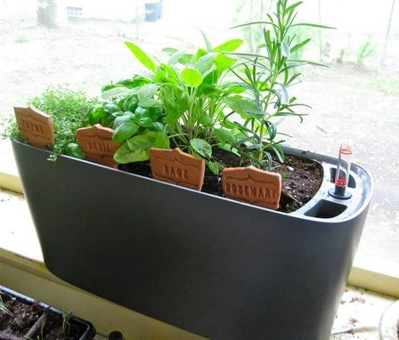 Window Sill Planter Urban Zeal Planters