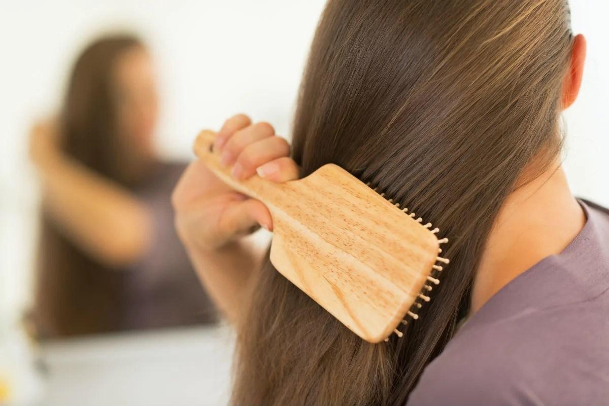 Resultat d'imatges de cepillar pelo desde la raiz