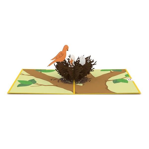 Bird Nest Pop Up New Baby Card - Lovepop