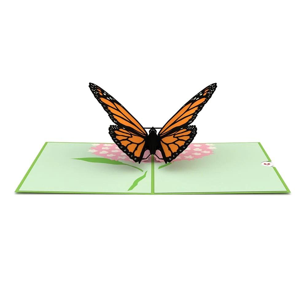 Butterfly Pop Up Card Lovepop