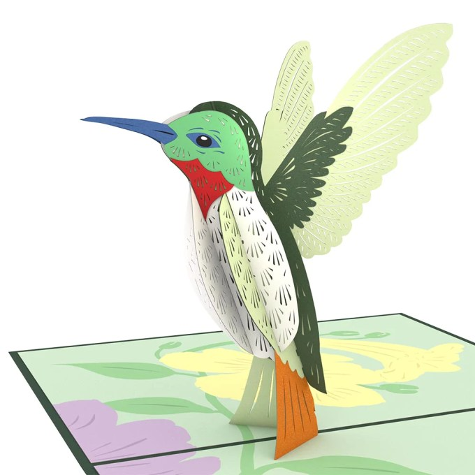 Hummingbird birthday pop up card
