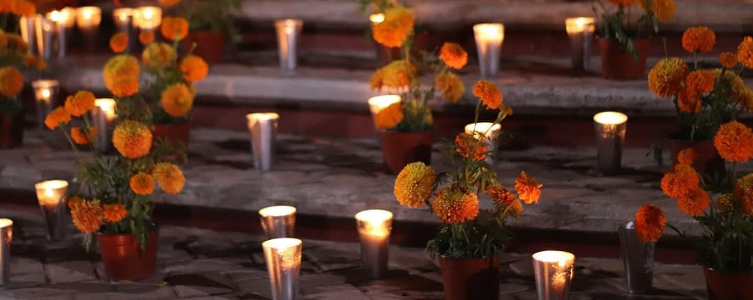 Orange flower with candle in the street