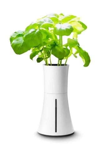 おしゃれな家庭菜園プランター Botanium