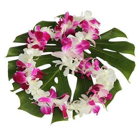 Fresh Hawaiian Flowers   Hawaiian Leis delivered Nationwide Fresh Hawaiian Leis
