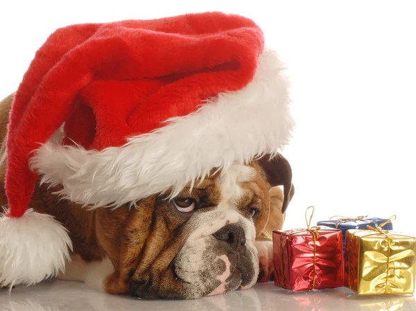 7 Things That Drive You Crazy During Christmas