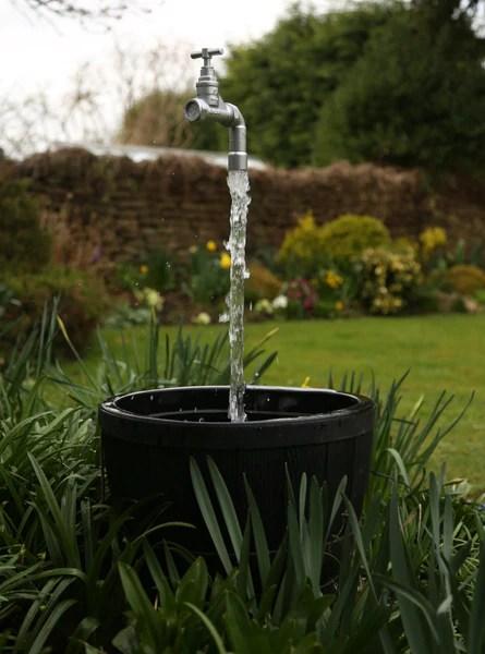 Best Water Garden Design