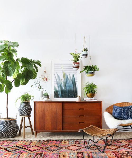 mid century interior with house plants