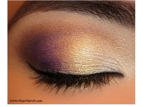 Purple Gold Eye Makeup Tutorial