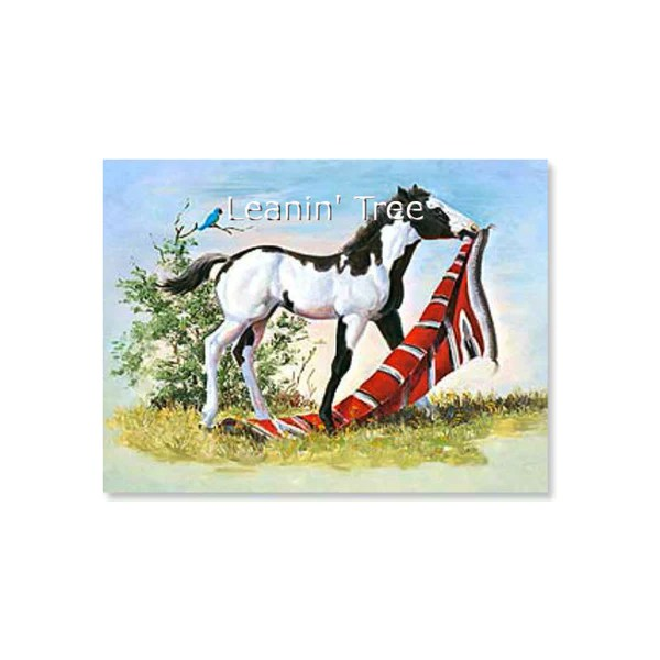 Leanin Tree Red Carpet Treatment Horse Thank You Card