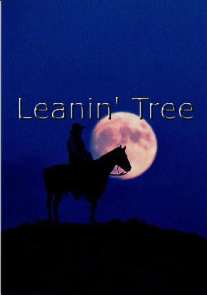 Leanin Tree Midnight Cowboy Birthday Greeting Card