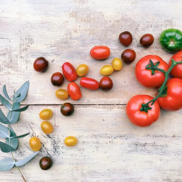 Tomatoes trigger eczema