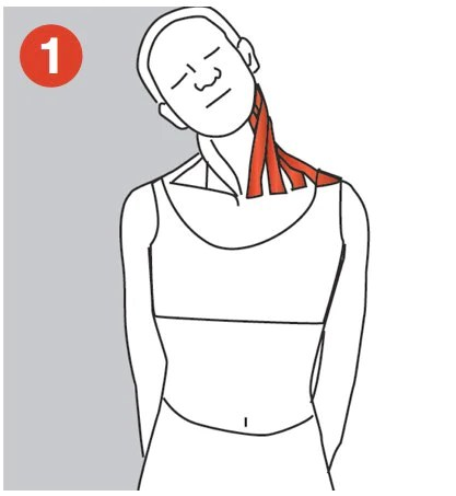 right neck pain stretch