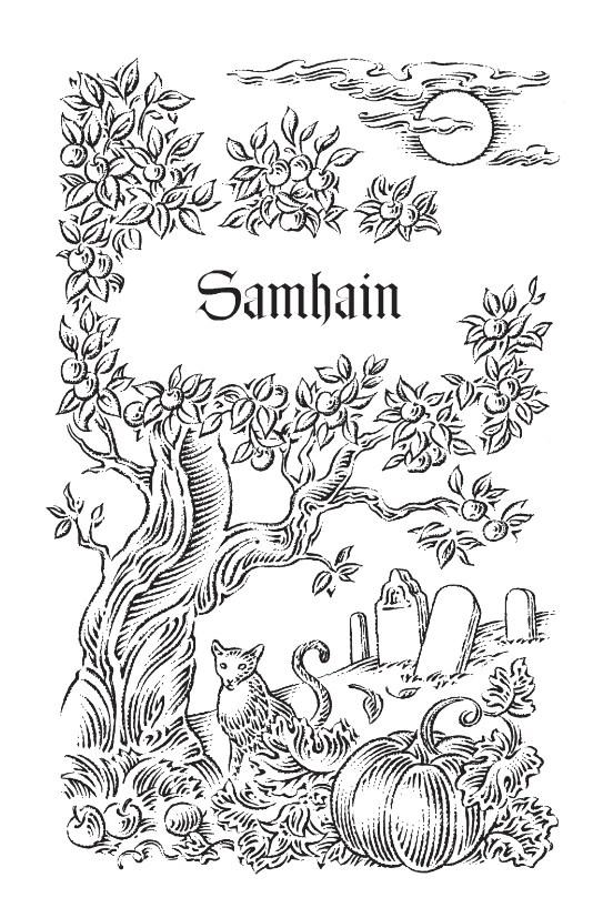 2016 Sabbats Almanac By Llewellyn Sabbat Box