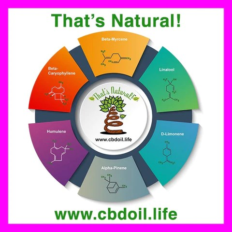 Thats Natural terpene profile, terpenes for anxiety, terpenes for sleep, hemp-derived CBD, legal hemp CBD, The That's Natural terpene profile includes: beta-myrcene, linalool, d-limonene, alpha-pinene, humulene, beta-caryophyllene - more from Thats Natural at www.cbdoil.life, cbdoil.life, and www.thatsnatural.info and find us an our Life Force Market outside of Basalt, Colorado in the Aspen Valley next to the Willits Gas Station CBD Distillery, best-rated CBD, Alex Jones, Glenn Beck, CW Botanicals #ThatsNatural #lifeforce #cbd #cbdoil
