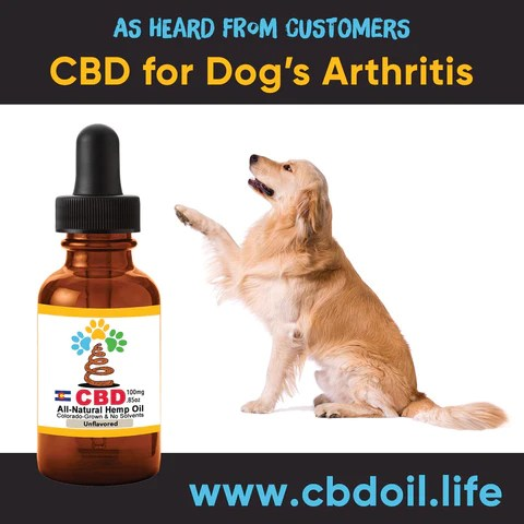 best-rated CBD for dogs, best CBD for great danes, best CBD for chihuahuas, CBD for pets, CBD for dogs, CBD for cats, CBD for birds, CBD oil for animals, That's Natural, Can CBD help animals, hemp-derived CBD, legal That's Natural Topical Products, full spectrum CBD Oil, entourage effects, cbdoil.life, www.cbdoil.life, legal in all 50 states, thatsnatural.info, www.thatsnatural.info