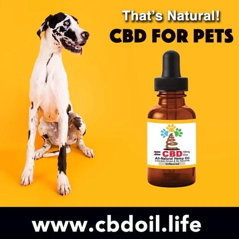 best-rated pet CBD, CBDA Oil, CBDP Oil - CBD for pets, CBD for dogs, CBD for cats, CBD for birds, CBD oil for animals, That's Natural, Can CBD help animals, hemp-derived CBD, legal That's Natural Topical Products, full spectrum CBD Oil, entourage effects, cbdoil.life, www.cbdoil.life, legal in all 50 states, thatsnatural.info, www.thatsnatural.info