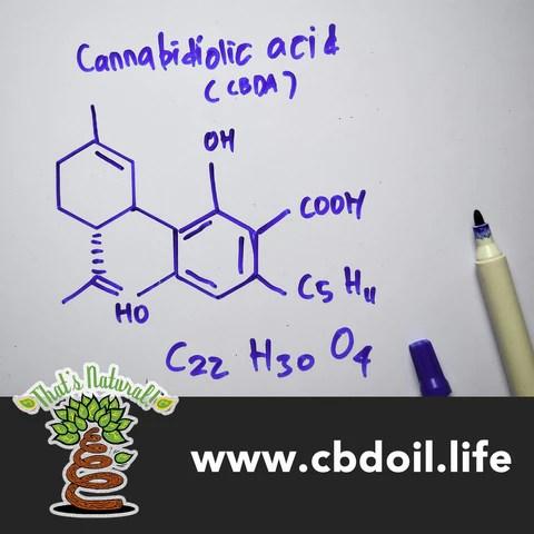 That's Natural best CBDA products, CBDA, CBDA Oil, CBDA creme, CBDA cream, CBDA for pain, CBDA for anxiety - That's Natural full spectrum CBD oil products with cannabinoids and terpenes - experience the entourage effect with Thats Natural CBD Oil, legal hemp CBD, hemp legal in all 50 States, CBD, CBDA, CBC, CBG, CBN, Cannabidiol, Cannabidiolic Acid, Cannabichromene, Cannabigerol, Cannabinol; beta-myrcene, linalool, d-limonene, alpha-pinene, humulene, beta-caryophyllene - find at cbdoil.life and www.cbdoil.life