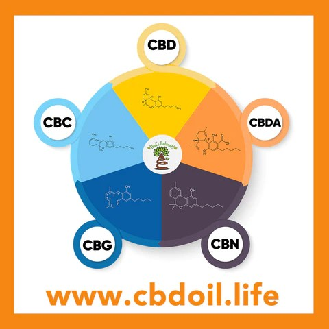 family-owned CBD company, legal hemp CBD, hemp legal in all 50 States, hemp-derived CBD, Thats Natural topical CBD products, create Life Force with biodynamic Colorado hemp - That's Natural CBD Oil from hemp - whole plant full spectrum cannabinoids and terpenes legal in all 50 States - www.cbdoil.life, cbdoil.life, www.thatsnatural.info, thatsnatural.info, CBD oil testimonials, hear from customers of CBD oil products