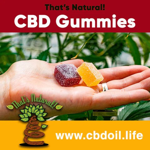 That's Natural CBD gummies, CBD gummy, yummy full spectrum CBD from Thats Natural at www.cbdoil.life, cbdoil.life, www.thatsnatural.info, thatsnatural.info  hemp-derived CBD legal in all 50 States, most trusted CBD, most effective CBD, best CBD for sleep, best CBD for anxiety, best CBD for sleep, Entourage Effect with That's Natural CBDA
