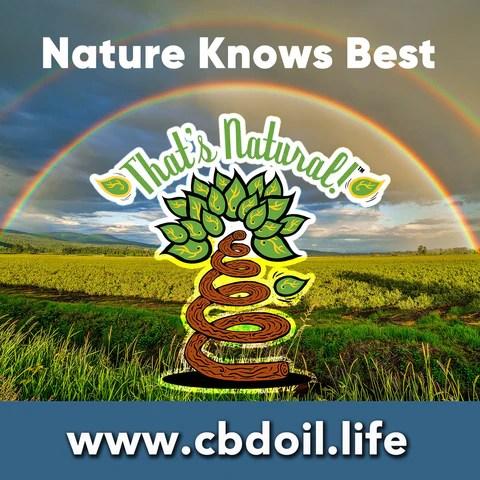 most trusted CBD, best rated CBD, That's Natural full spectrum raw CBD - entourage effect - Precious plant compounds in That's Natural full spectrum CBD-rich hemp oil include other cannabinoids besides CBD (CBDA, CBC, CBG, CBN), terpenes (beta-myrcene, linalool, d-limonene, alpha-pinene, humulene, beta-caryophyllene) and polyphenols - See more about safe and effective hemp-derived CBD oil from Thats Natural at www.cbdoil.life and cbdoil.life and www.thatsnatural.info