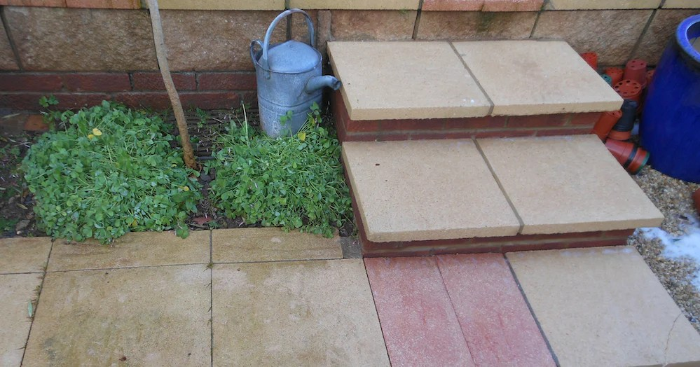 soft washing concrete paths and patios