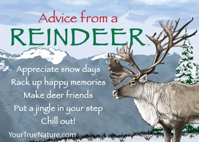 Advice From A Reindeer Jumbo Magnet Your True Nature Inc