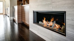 Valor L1 Zero Clearance Linear Gas Fireplace Barbecues