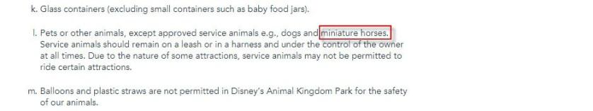 Disney World Horse Rules