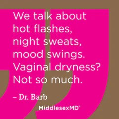 We talk about hot flashes, night sweats, mood swings. Vaginal dryness? Not so much.