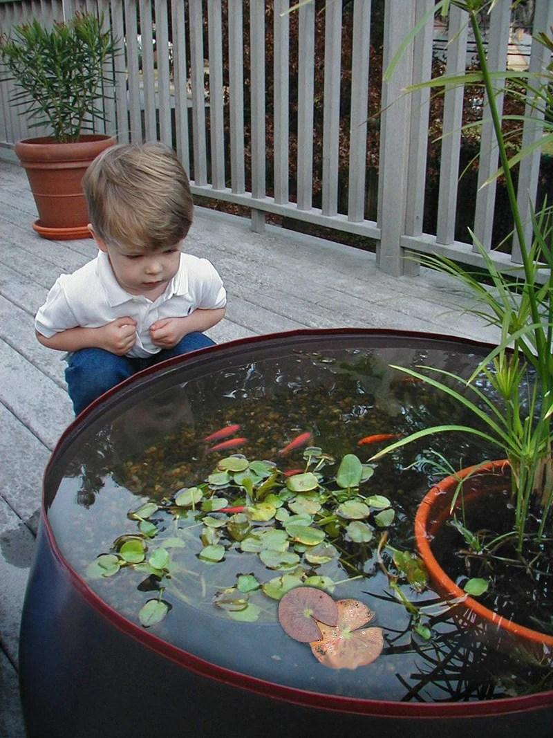 garden water feature pop up pond aquarium 28 gallon